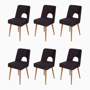 Polnische Shell Stühle, 1960er, 6er Set