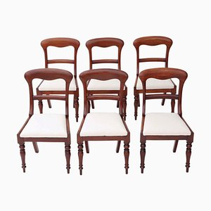 Antique Victorian Mahogany Dining Chairs, 1850s, Set of 6