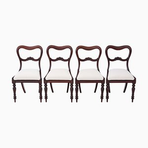 Antique William IV Mahogany Dining Chairs, 1830s, Set of 4