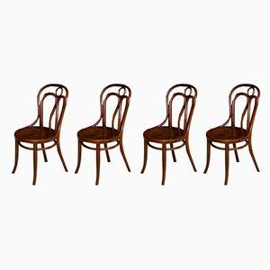 Chaises de Salle à Manger Édouardiennes Antiques en Bois Courbé par Jacob & Josef Kohn, Autriche, Set de 4