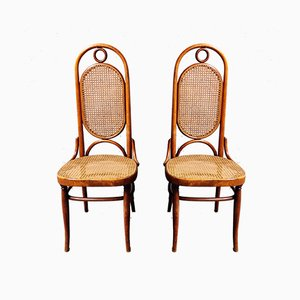 Model 17 Dining Chairs from Gebrüder Thonet Vienna GmbH, 1980s, Set of 2