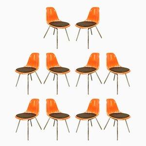 Esszimmerstühle von Charles & Ray Eames für Herman Miller, 1950er, 10er Set