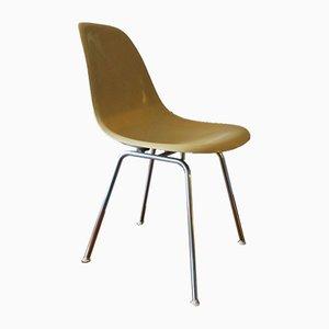 DSX Beistellstuhl aus Glasfaser von Charles & Ray Eames für Herman Miller, 1950er