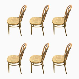Lotus N25 Dining Chairs by Michael Thonet for Gebrüder Thonet Vienna GmbH, 1894, Set of 6