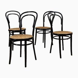 Chaises de Salle à Manger Mid-Century de Thonet, 1950s, Set de 4