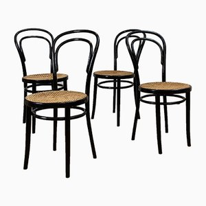 Mid-Century Dining Chairs from Thonet, 1950s, Set of 4