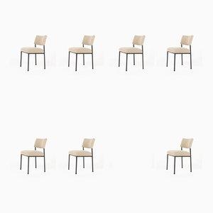 Modell 764 Esszimmerstühle von Joseph-André Motte für Steiner, 1950er, 10er Set