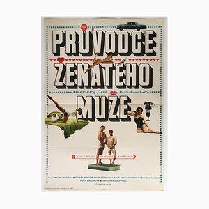 Póster de la película The Guide for the Married Man de Vasil Miovsky, 1969
