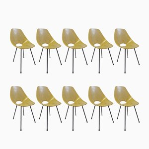 Medea Dining Chairs by Vittorio Nobili for Tagliabue, 1950s, Set of 10