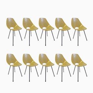 Medea Esszimmerstühle von Vittorio Nobili für Tagliabue, 1950er, 10er Set