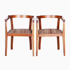 Sessel mit Gestell aus Nussholz, 1920er, 2er Set