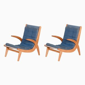 Ash Armchairs by Jan Vanek, 1950s, Set of 2