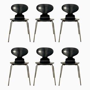 Sedie da pranzo Ant di Arne Jacobsen per Fritz Hansen, anni '80, set di 6