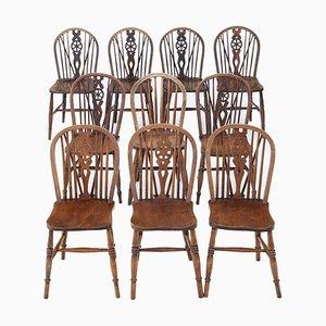 Antike Esszimmerstühle aus Eschenholz, Ulmenholz & Buche, 10er Set