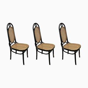 Chaises de Salle à Manger No. 17 Mid-Century de Thonet, Set de 3