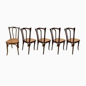 Chaises de Salle à Manger No. 56 Vintage de Thonet, 1906, Set de 5