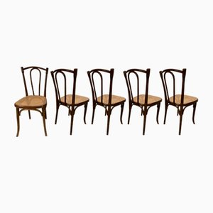 Vintage No. 56 Dining Chairs from Thonet, 1906, Set of 5