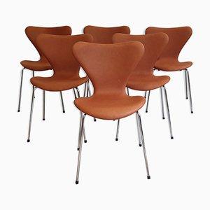 Esszimmerstühle von Arne Jacobsen für Fritz Hansen, 1960er, 6er Set
