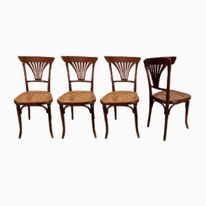 Antike Nr. 221 Esszimmerstühle von Thonet, 4er Set