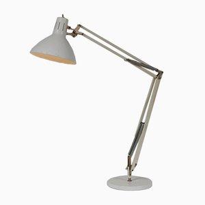 Lámpara de mesa Anglepoise de Hala, años 50