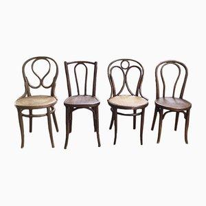 Antike Modell 19, 20 & 218 Esszimmerstühle von Thonet & Fischel, 4er Set