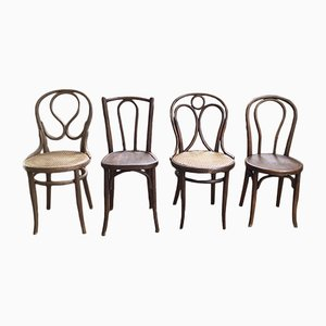 Antique Models 19, 20, and 218 Dining Chairs from Thonet and Fischel, Set of 4