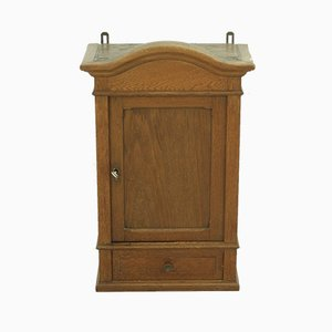 Small Antique Oak Veneer Wall-Mounted Cabinet