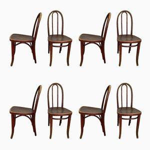 Chaises de Salle à Manger N°638 Vintage de Thonet, Set de 8
