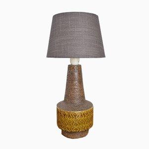 Lampe de Bureau par Aldo Londi pour Bitossi, années 60