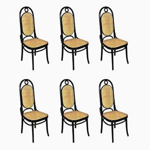 Chaises de Salle à Manger Modèle 207R en Bois et Jonc par Michael Thonet, années 50, Set de 6