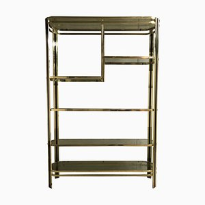 Brass and Smoked Glass Wall Unit from Belgo Chrom / Dewulf Selection, 1970s