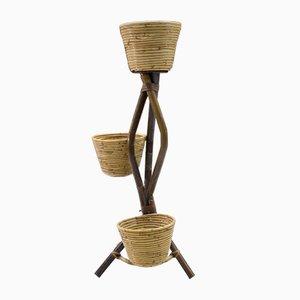 Italienischer Pflanzenhalter aus Bambus & Rattan, 1950er