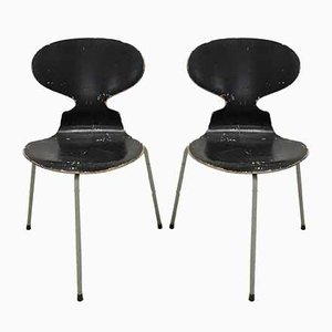 Dining Chairs by Arne Jacobsen for Fritz Hansen, 1952, Set of 2