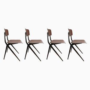 Stühle aus Pagholz mit Kompassbeinen von Marko, 1950er, 4er Set