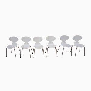 Chaises de Salle à Manger 3110 par Arne Jacobsen pour Fritz Hansen, Set de 6