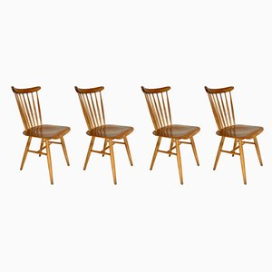 Czechoslovakian Side Chairs from TON, 1960s, Set of 4