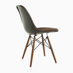 Sedia da pranzo DSW di Charles & Ray Eames per Herman Miller, anni '70