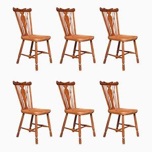 Antike Windsor Beistellstühle aus Eibe & Ulmenholz, 6er Set