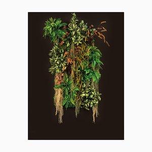 Pannello da parete Kalalau vegetale di Vgnewtrend