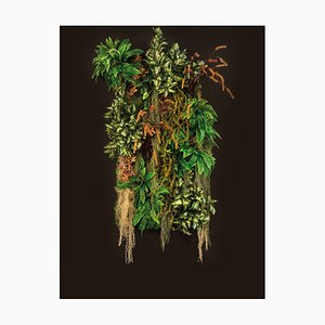 Parete Vegetale Kalalau Wandvertikaler Garten von Vgnewtrend