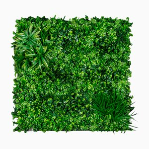 Modular Ecuador Wall Vertical Garden Panel from VGnewtrend