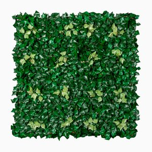 Modular Ivy Wall Vertical Garden Panel from VGnewtrend