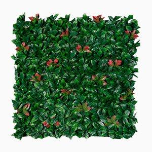 Jardinera de pared Photinia modular vertical de VGnewtrend