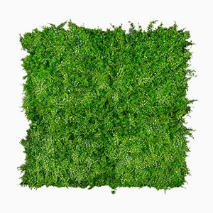 Modular Tundra Plant Wall Vertical Garden Panel from VGnewtrend