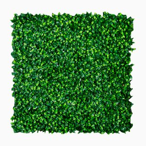 Modular Jasmine Wall Vertical Garden Panel from VGnewtrend