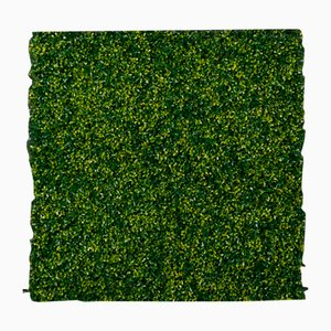 Modular Flat Boxwood Wall Vertical Garden Panel from VGnewtrend