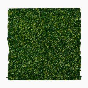 Panneau Mural Végétal Modulable Bois de Buis de VGnewtrend