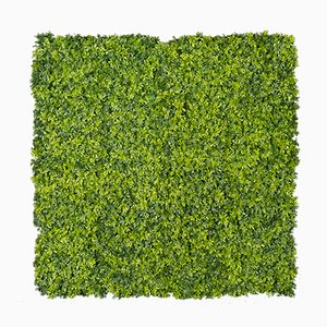 Jardinera de pared modular vertical de boj con plantas mixtas de VGnewtrend