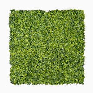 Panneau Mural Végétal Modulable Plantes Mixtes et Buis de VGnewtrend