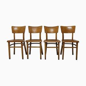 Chaises de Salle à Manger en Hêtre de Thonet, 1950s, Set de 4